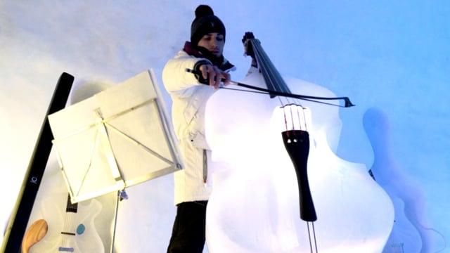 muziekinstrumenten van ijs